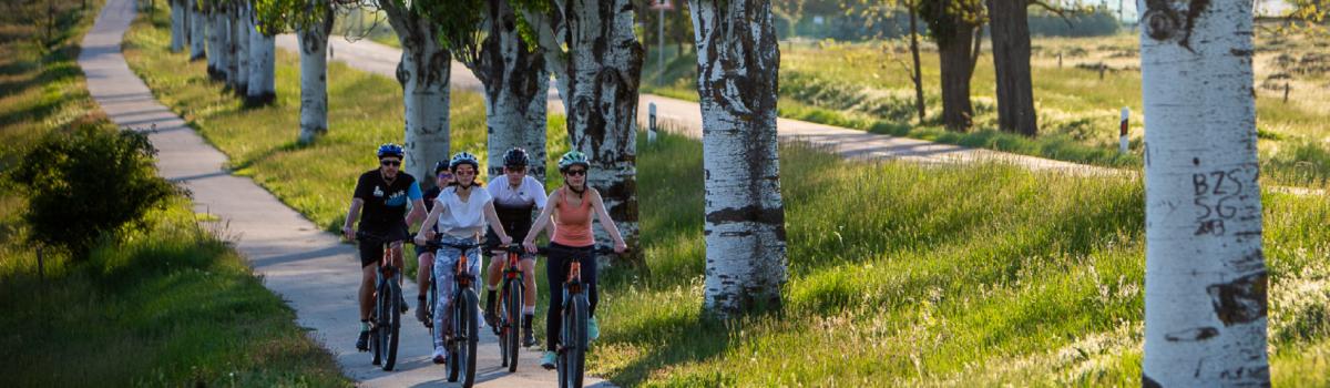 Ridehard 2021: new season, new website, new programs, new routes